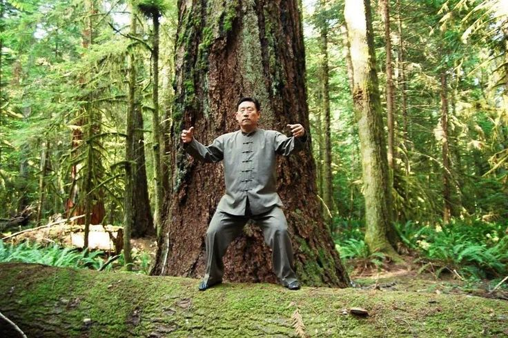 Chen Xiaowang practising standing post in a forest